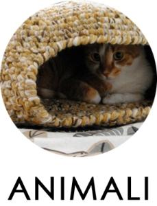 animali03