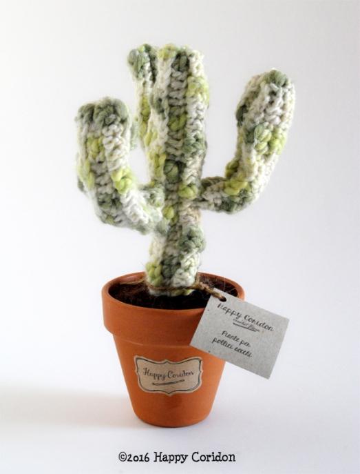 cactus-senape01