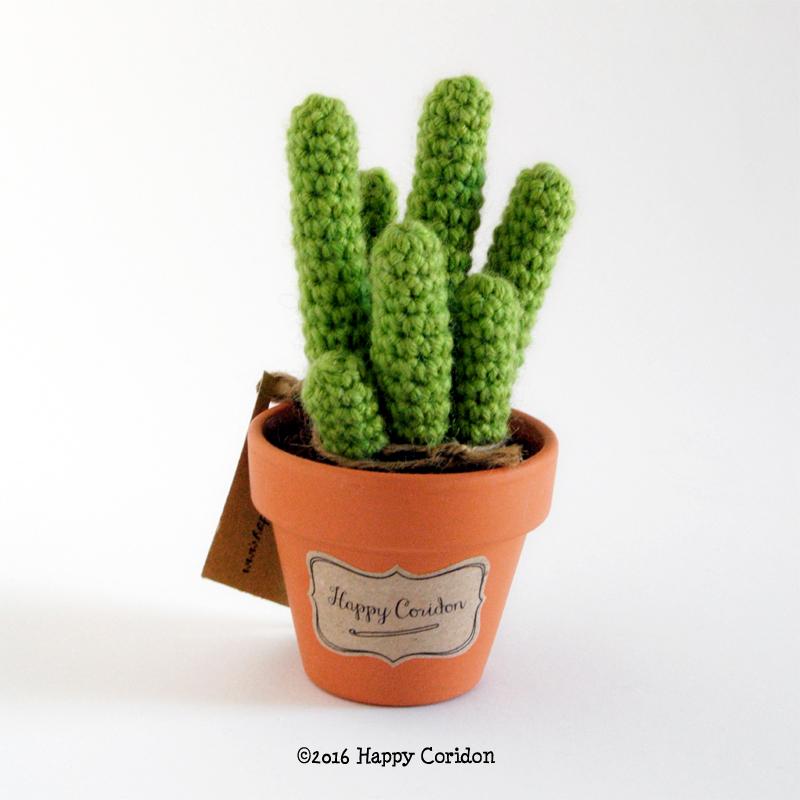 cactus-senape06