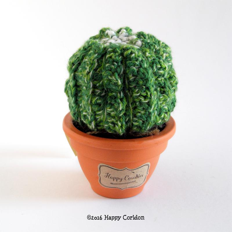 cactus-senape07