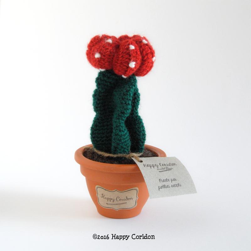 cactus-senape09
